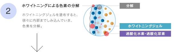 2ホワイトニングによる色素の分解
